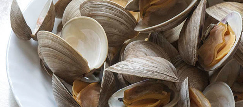Steamed-Clams-Ocean-City-Maryland-21842-Victorias-Seafood